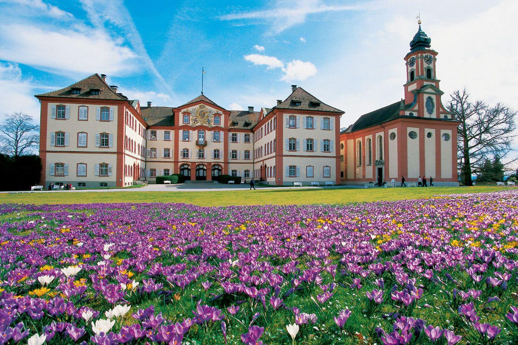 Mainau Schloss und Krokuswiese
