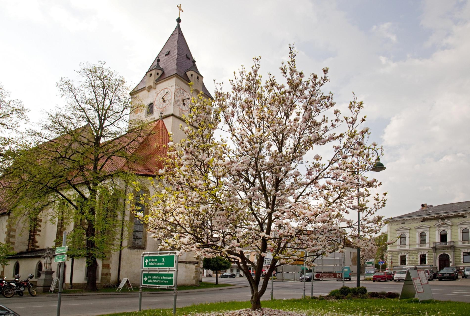 Perg Stadtkirche
