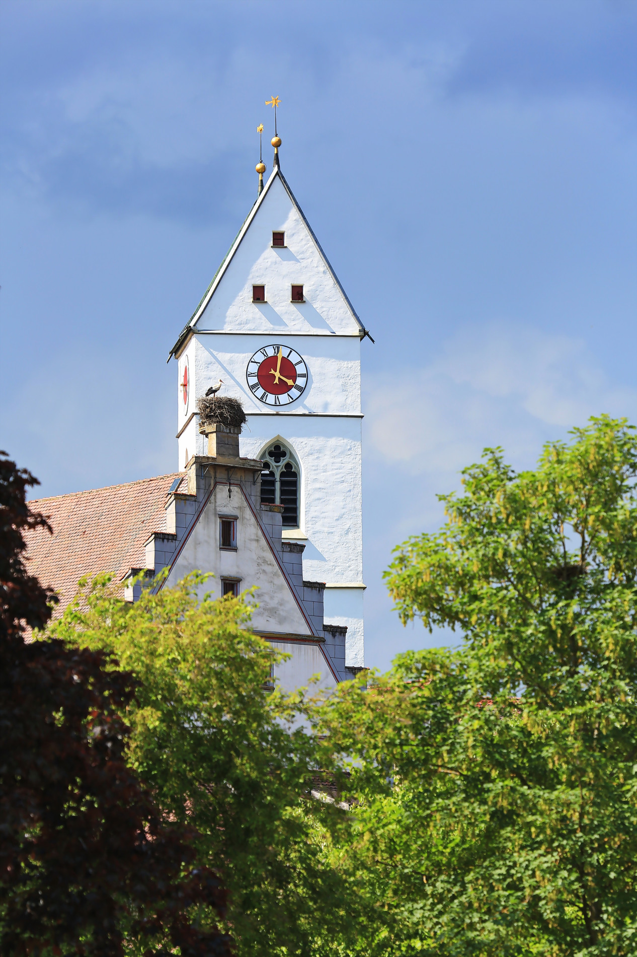 Riedlingen Rathaus